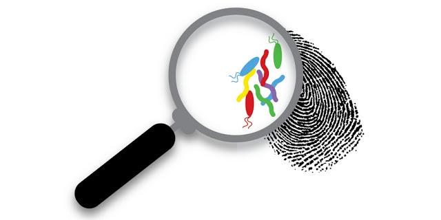 fingerprint no text